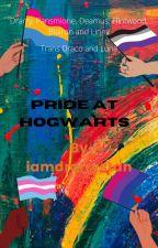 Pride At Hogwarts (DC) by iamdrarrystan