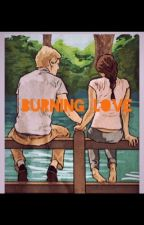 Burning Love- an Everlark fanfic by fanfics12345
