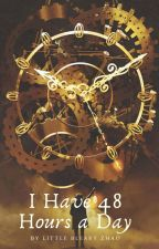 I Have 48 Hours a Day (我的一天有48 小时) by Little Bleary Zhao (English Translation) by BoredWanderer00