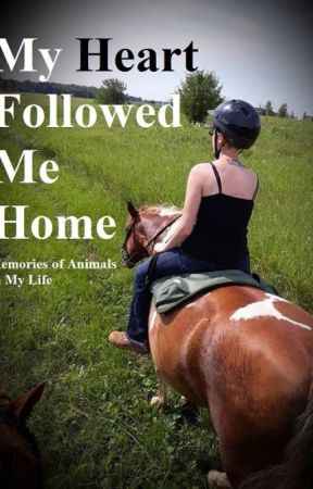 My Heart Followed Me Home ~ True Stories of Animals In My Life by Julian-Greystoke