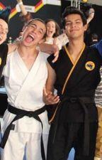 Karate kid and cobra Kai imagines and one shots  by harriett___xx