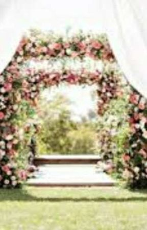 The Wedding Book by Mr_Scarhead