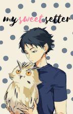 My Sweet Setter (Akaashi x Reader) by Potato_Scheme11x