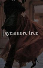 Sycamore Tree   L. Alvez by hoodienglasses