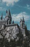 Draco Malfoy's Amortentia  ||DracoMalfoyXReader FanFic cover