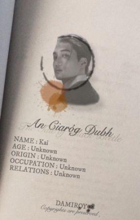 an Ciaróg Dubh by damiroy