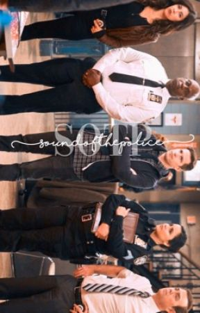 sound of the police,          b99 apply fic by florencassells