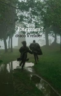 Enemies? (Draco X Reader) cover