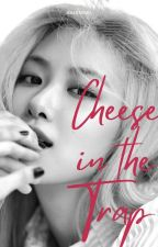 cheese in the trap • jaerose by baebaemu