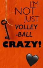 I'M NOT JUST VOLLEYBALL CRAZY! by TaKeItOutSiDeHoE