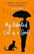 My Adopted Cat Is A God! by UnexistedUser