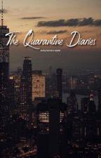 The Quarantine Diaries  by barnesjamcs