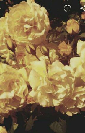 •.¸♡ insta ♡¸.• by _oreo-