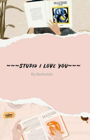 Stupid I Love You (End)  by Riiiiee