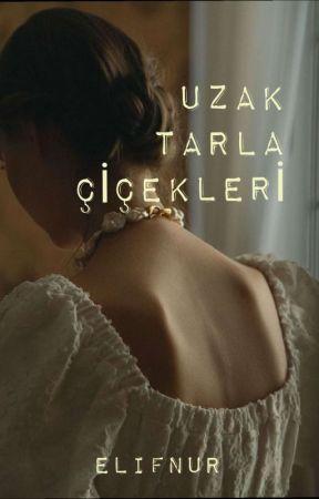 UZAK TARLA ÇİÇEKLERİ by mavi943