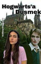 sectvms3mpra tarafından yazılmış Hogwarts'a Düşmek adlı hikaye