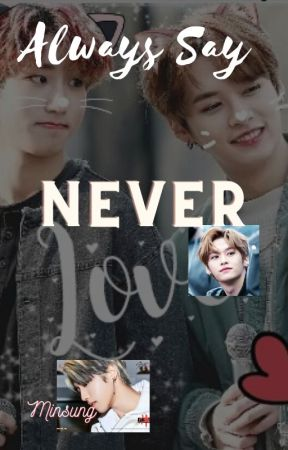 Always Say Never - minsung by Baer2407