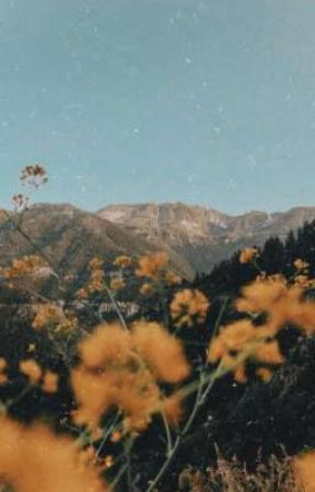 Flowerwasfound 🌻 by Flowerwasfound