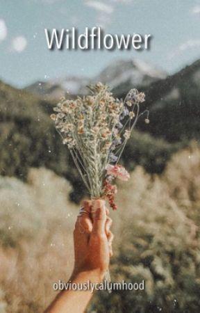 Wildflower - {lashton au}  by obviouslycalumhood