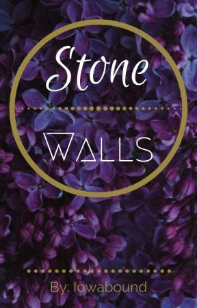 Stone Walls by Iowabound