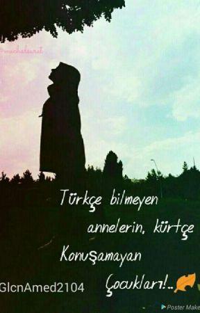 BİZ KÜRTLERDE by hasretdolugeceler21