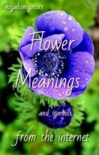 Flower Meanings and Symbols from the Internet by miyakomigoto11