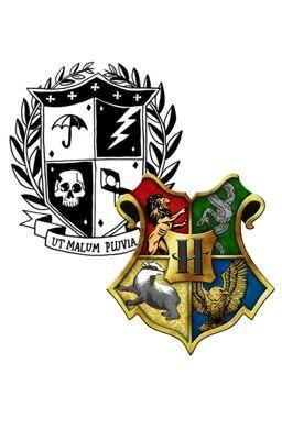 Chosen (hogwarts boys x reader)(Harry Potter x umbrella academy)