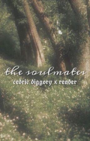 The Soulmates {Cedric Diggory x Reader} by sooophhhieeeee