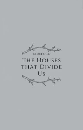 The Houses That Divide Us by bluefccds