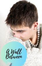 A Wall Between by overlordpotatoe