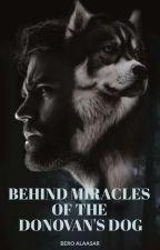 Behind Miracles of the Donovan's dog by beroalaasar