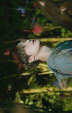2020 BOYS ☼ TAROCHAN [SHOTARO X SUNGCHAN] by ahoeforMinhoe