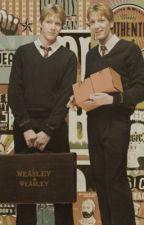 The Weasley Twin x reader by daisy_loverman