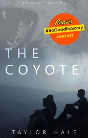 The Coyote by solacing