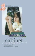 cabinet by radvelvet