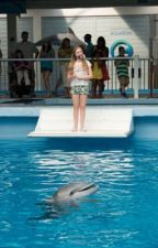 Dolphin Tale Fanfiction by jaeminslostboba