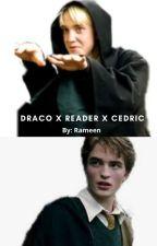 Three of us (Draco X Reader X Cedric) by raali16_heh