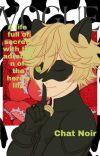 Wings Of Paris(Miraculous Ladybug x Reader) cover