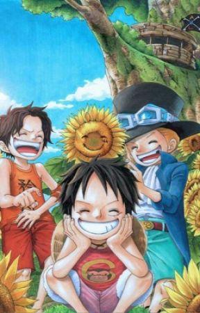 Du Soleil (One Piece X Reader) by MonkeyDNoodle