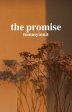 The Promise (TommyInnit x Reader) by shxye_