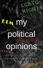My Political Opinions by mxth3mxticxl-m3th