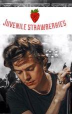 JUVENILE STRAWBERRIES| H.S. AU by prettyoddgaze