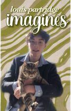 𝐋𝐎𝐔𝐈𝐒 𝐏𝐀𝐑𝐓𝐑𝐈𝐃𝐆𝐄 imagines 🎐 by dinochickennuggss