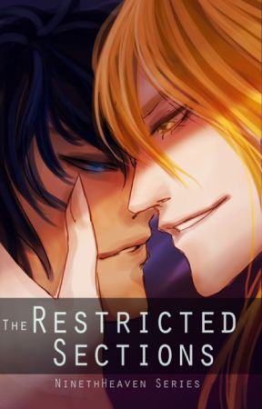 Restricted Sections by Htenin