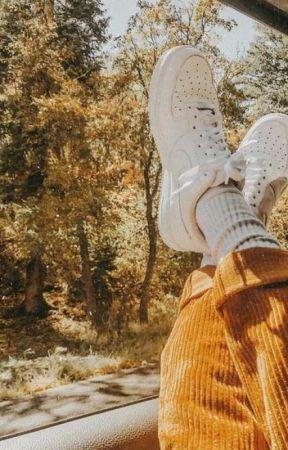 ❁ !Hσɳҽყ CσɱႦ! |PERSONAL SHENANIGANS| ❁ by H0n3y_D4rl1ng