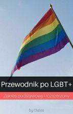 Przewodnik po LGBT+ autorstwa Olelos