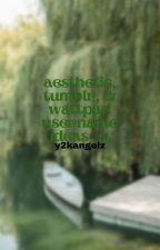 ↳ aesthetic, tumblr, & wattpad username ideas *book 4* [2020] **COMPLETED** by sincerelyyangels