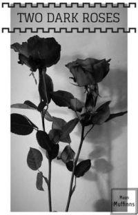 Two Dark Roses ~ Dark!Harry x Tom Riddle cover