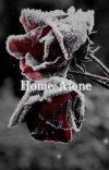 Home Alone  cover