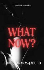 What Now? (Niall Horan) by threebananas4aeuro